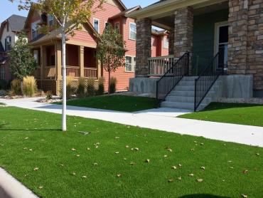 Grass Carpet Boston, Massachusetts Landscape Rock, Front Yard Ideas artificial grass