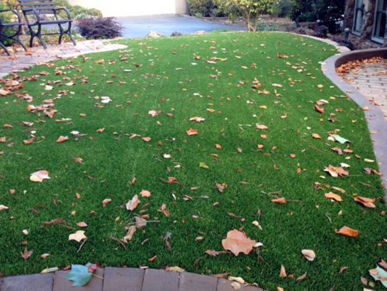 Artificial Grass Photos: Grass Carpet Davis, California Landscape Ideas, Front Yard
