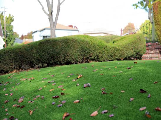 Artificial Grass Photos: Grass Carpet Lodi, California Landscape Rock, Front Yard Landscaping Ideas