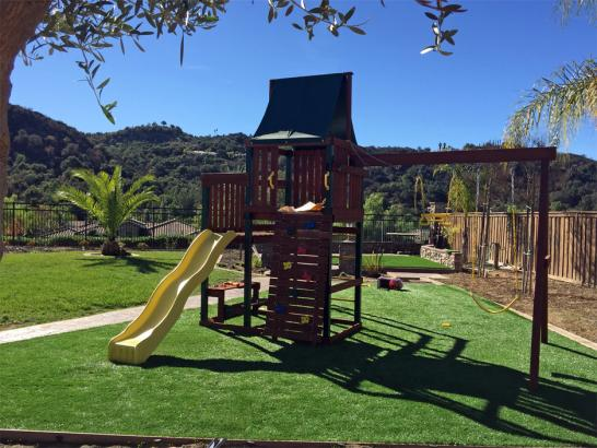 Artificial Grass Photos: Grass Carpet Petaluma, California Home And Garden