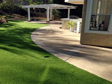 Artificial Grass Photos: Grass Carpet Port Saint Lucie, Florida Dog Run, Front Yard Ideas