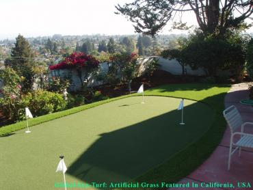 Grass Carpet San Diego, California Office Putting Green, Backyard Landscaping Ideas artificial grass