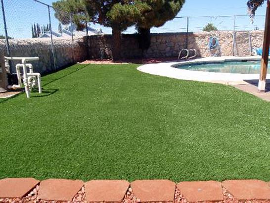 Artificial Grass Photos: Grass Installation Maple Grove, Minnesota Fake Grass For Dogs, Pool Designs