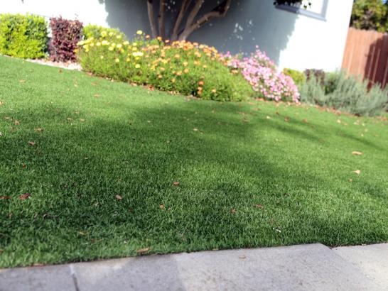 Artificial Grass Photos: Grass Installation Millcreek, Utah Rooftop, Front Yard Design