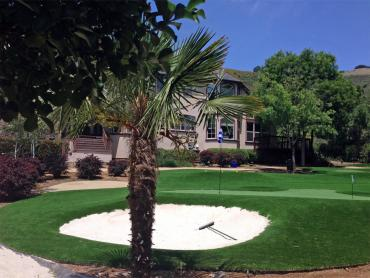 Artificial Grass Photos: Grass Turf Bakersfield, California Landscape Ideas, Front Yard Landscaping