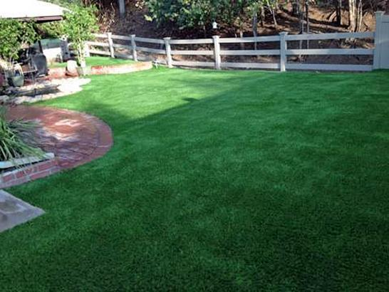 Artificial Grass Photos: How To Install Artificial Grass Hamilton, Ohio Artificial Grass For Dogs, Backyard Landscape Ideas