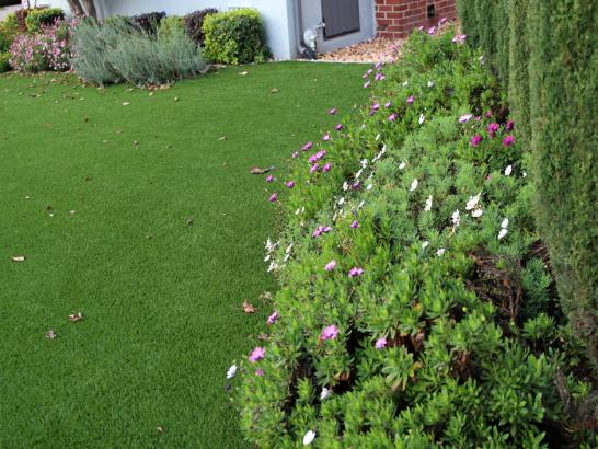 Artificial Grass Photos: Installing Artificial Grass Gardena, California Garden Ideas, Front Yard Landscaping Ideas