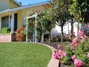 Artificial Grass Photos: Lawn Services Cicero, Illinois Landscape Ideas, Front Yard Ideas