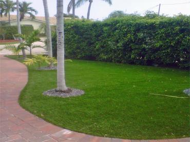 Artificial Grass Photos: Lawn Services Killeen, Texas Landscape Rock, Front Yard