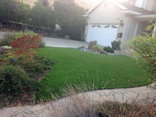 Artificial Grass Photos: Lawn Services West Lynchburg, Virginia Roof Top, Small Front Yard Landscaping