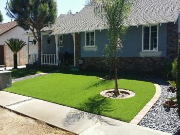 Artificial Grass Photos: Outdoor Carpet BloomingtonMn, Minnesota Landscape Photos, Small Front Yard Landscaping