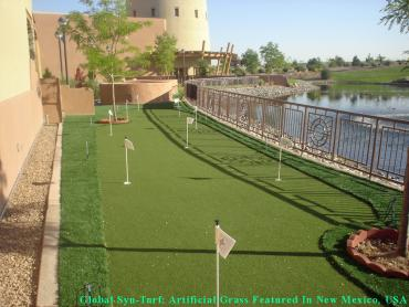 Outdoor Carpet Brooklyn, New York Paver Patio, Beautiful Backyards artificial grass