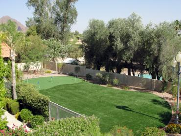 Artificial Grass Photos: Outdoor Carpet McAllen, Texas Office Putting Green, Backyard