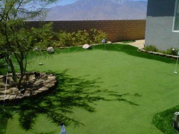 Artificial Grass Photos: Outdoor Carpet Odessa, Texas Roof Top, Backyard Ideas