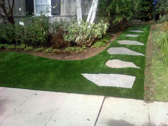Artificial Grass Photos: Outdoor Carpet Perris, California Landscaping, Front Yard Landscaping Ideas