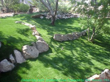 Outdoor Carpet Phoenix, Arizona Gardeners, Commercial Landscape artificial grass