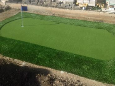 Artificial Grass Photos: Outdoor Carpet San Pedro, California Outdoor Putting Green, Backyards