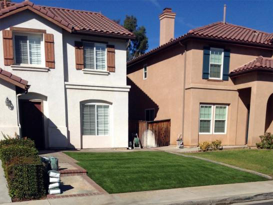 Artificial Grass Photos: Plastic Grass Great Falls, Montana Lawns, Front Yard Landscaping Ideas