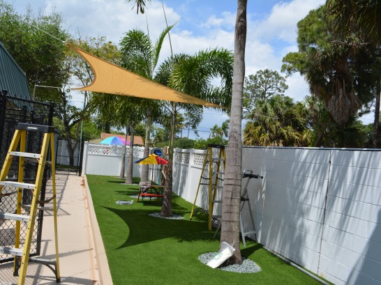 Artificial Grass Photos: Plastic Grass La Crosse, Wisconsin Dogs, Commercial Landscape