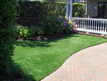 Artificial Grass Photos: Plastic Grass Wichita, Kansas Landscape Photos, Landscaping Ideas For Front Yard