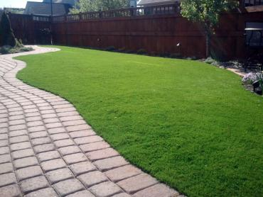 Artificial Grass Photos: Synthetic Grass Buffalo, New York Lawn And Landscape, Backyard Design
