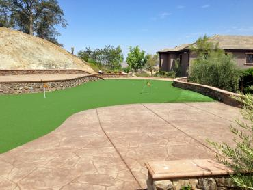 Artificial Grass Photos: Synthetic Grass Cost Albany, Georgia Putting Green Grass, Backyard Ideas