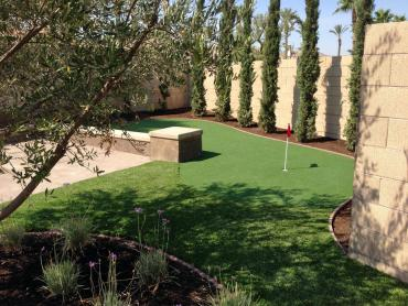Artificial Grass Photos: Synthetic Grass Gary, Indiana Golf Green, Backyard Landscaping