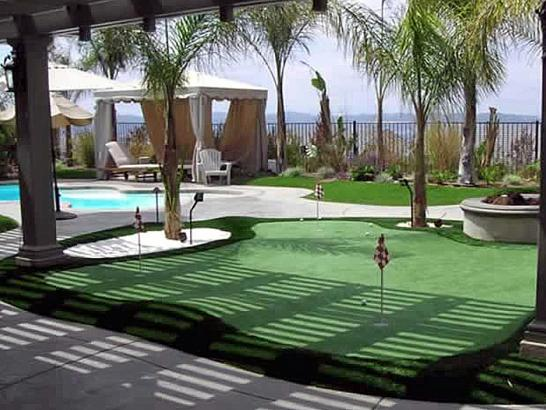 Artificial Grass Photos: Synthetic Grass Grand Junction, Colorado Landscaping Business, Natural Swimming Pools