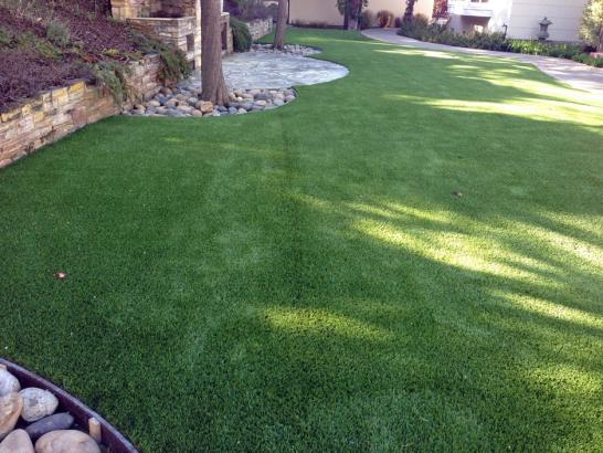 Artificial Grass Photos: Synthetic Grass Wilmington, Delaware Hotel For Dogs, Backyard