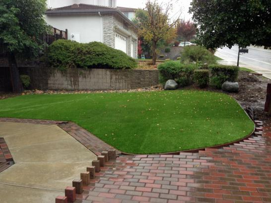 Synthetic Lawn Alameda, California Landscape Rock, Backyard Ideas artificial grass