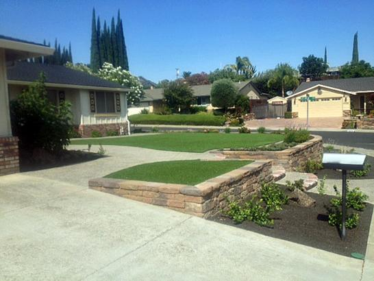 Artificial Grass Photos: Synthetic Lawn Pharr, Texas Design Ideas, Front Yard Landscaping