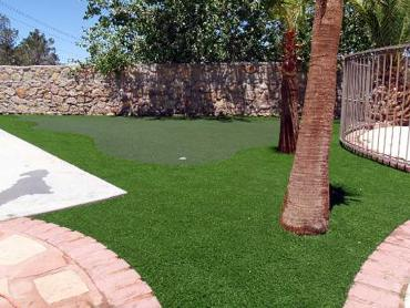 Artificial Grass Photos: Synthetic Lawn Santa Barbara, California Landscape Photos, Backyard Landscaping