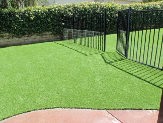 Artificial Grass Photos: Synthetic Turf Conroe, Texas Dog Pound, Front Yard Landscape Ideas