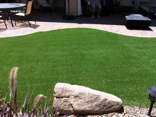 Artificial Grass Photos: Synthetic Turf Lynchburg, Virginia Landscape Ideas, Beautiful Backyards