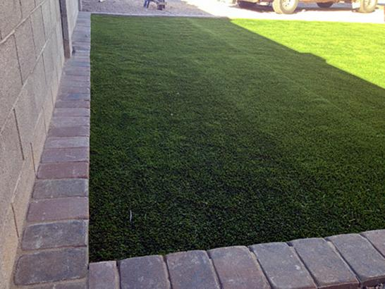 Artificial Grass Photos: Synthetic Turf South Whittier, California Dog Pound, Front Yard Landscaping