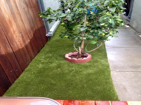 Artificial Grass Photos: Synthetic Turf Supplier Chicopee, Massachusetts Rooftop, Backyard Designs
