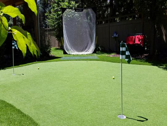 Artificial Grass Photos: Synthetic Turf Supplier Mountain View, California Putting Green Grass, Backyard Landscaping