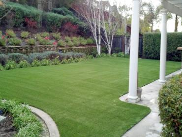 Artificial Grass Photos: Synthetic Turf Supplier West Covina, California Dog Pound, Backyard Garden Ideas