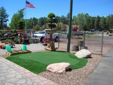 Artificial Grass Photos: Turf Grass Concord, California Garden Ideas, Commercial Landscape