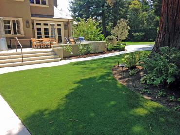 Artificial Grass Photos: Turf Grass Hollywood, Florida City Landscape, Backyard Designs