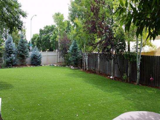 Artificial Grass Photos: Turf Grass Owensboro, Kentucky Fake Grass For Dogs, Backyard Landscaping Ideas