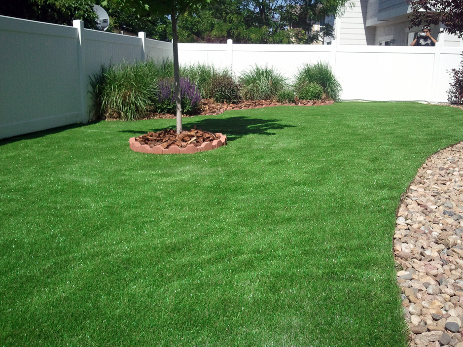 Plastic grass tucson arizona gardeners backyard for Best grass for landscaping