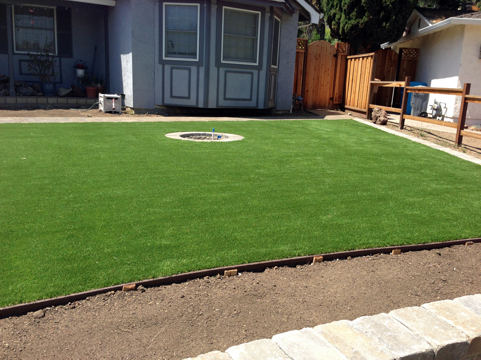 Synthetic Grass Mesquite Texas Landscape Ideas Landscaping Ideas