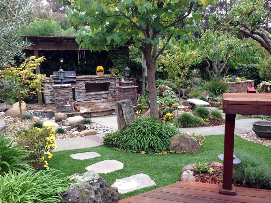 turf grass union city california lawns backyard