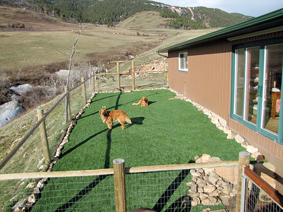 Artificial Turf Cost Greensboro, North Carolina Backyard ... on Artificial Turf Backyard Ideas id=77584